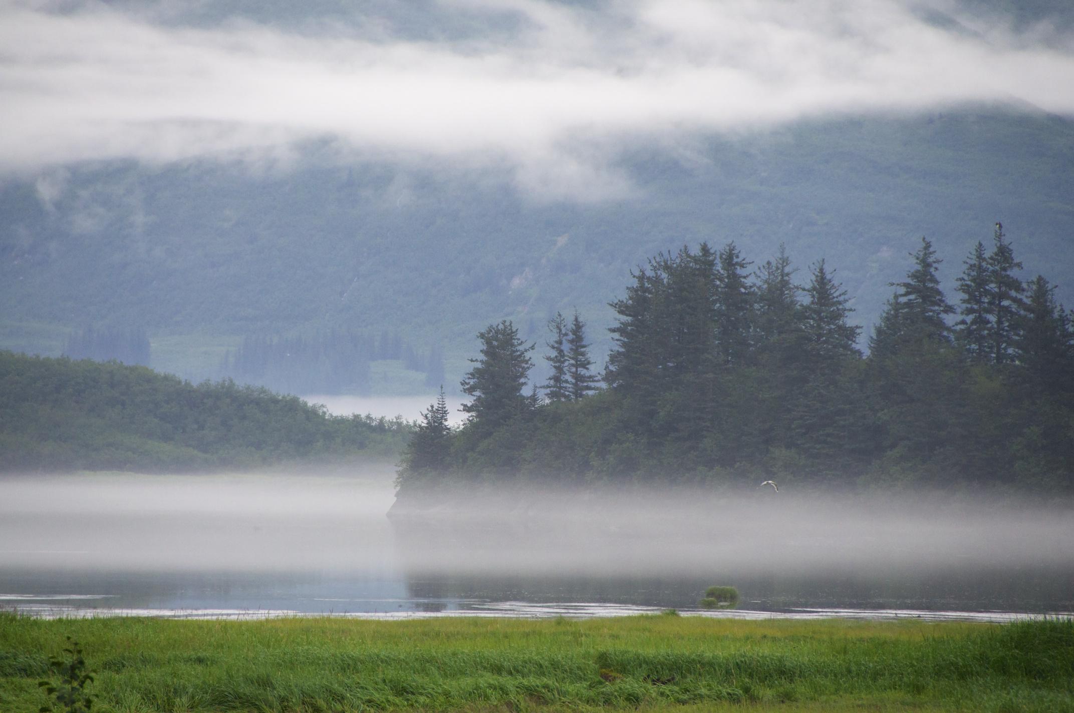 Alaska_2013_1324